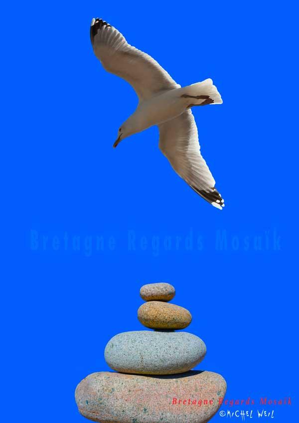 Vol au dessus d'un…