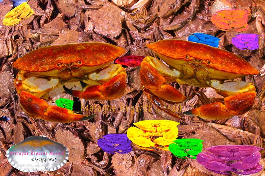 Panier de crabes