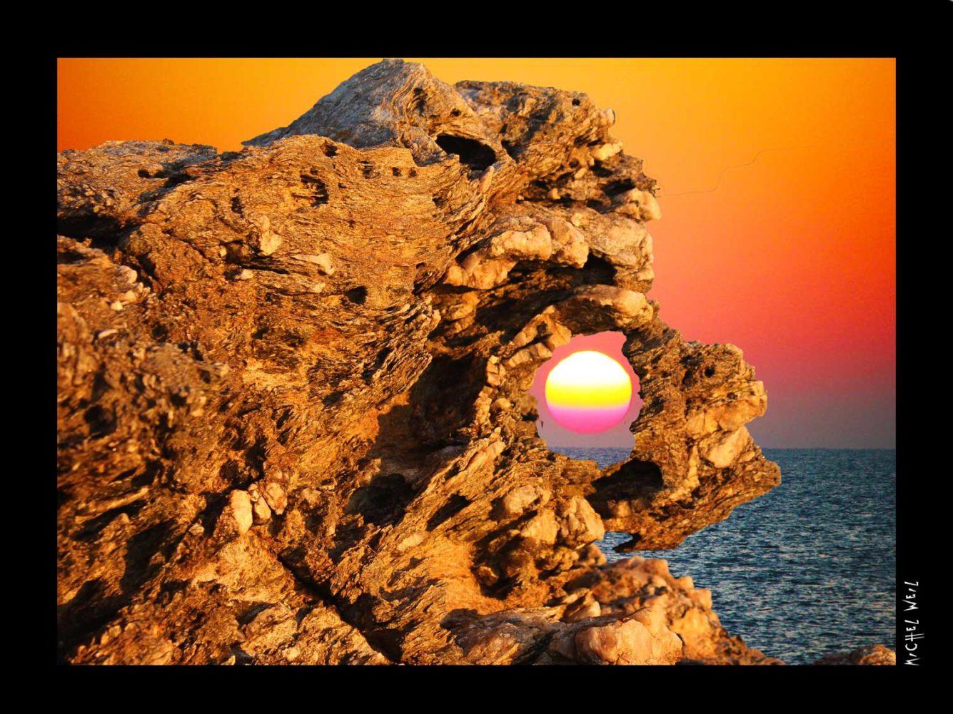 Lion Sunset