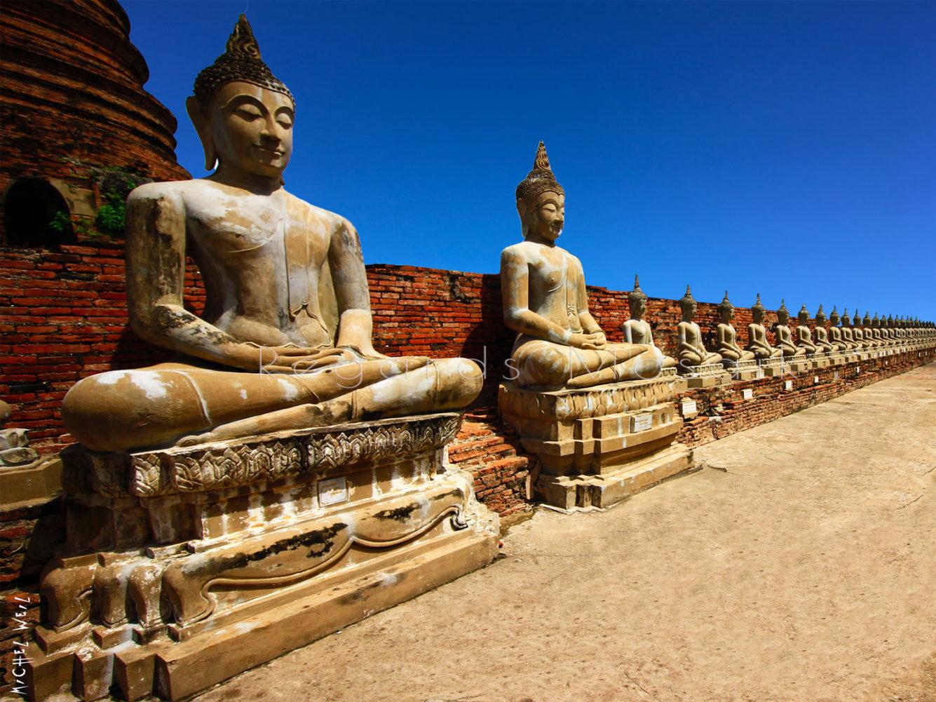 Les Bouddhas d'Ayutthaya