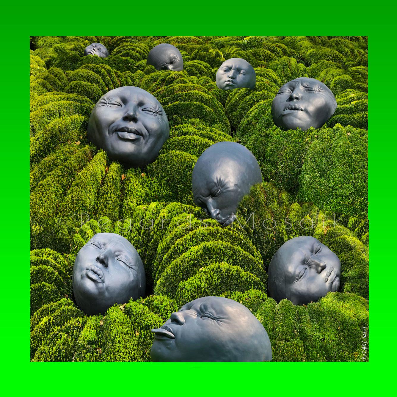 Le jardin des émotions